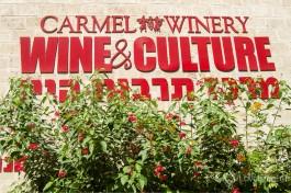 Вывеска винного культурного центра на заводе Кармель.