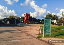 Тель-Авивский университет, Израиль. Фото - Ирина Юдкевич.