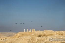 древний город Набатеев, в самом сердце израильской пустыни Негев.