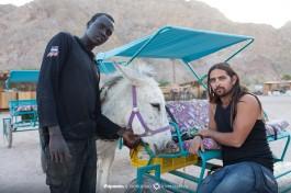 Работники верблюжьего ранчо.