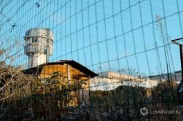 В Израиле соблюдают законы гораздо больше, чем во многих других странах.