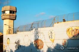 Закон и порядок на страже израильского общества.