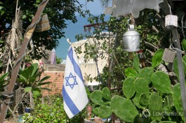 Израиль - это любовь к стране