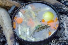 Можно рыбачить на море, на озере или в магазине:)