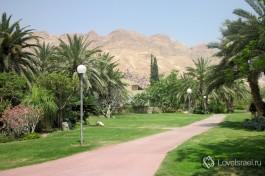 Зеленый оазис в Иудейской пустыне - кибуц Эйн-Геди
