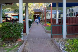 Территория яслей в одном из мошавов (сельскохозяйственных поселений) центра страны.