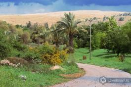 Парк Неот Кдумим, Израиль.
