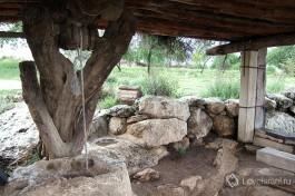 В парке Неот Кедумим воссоздана природа библейского времени.