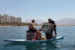 Эйлатские рыбаки... И такое здесь бывает :)