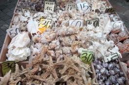 На рынке Эйлата можно купить сувенир с берегов Красного моря.