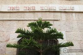 Иерусалимский натюрморт.