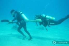 Погружение в подводный мир Эйлата.