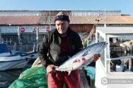 Яффский рыбак с утренним уловом. Яффо Израиль.