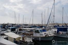 Рыболовные и прогулочные суда и лодки в яффском порту.