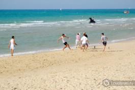 На пляже Бат-Яма можно встретить коней
