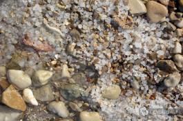 Соль на берегу Мертвого моря. Приятного путешествия! )
