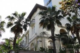 Дом Левина в окружении пальм.