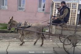 Частые виды самого безотказного транспорта.