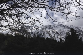 Лучше гор могут быть только горы! Грузинские горы :)