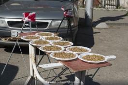Продают проростки пшеницы, Тбилиси.