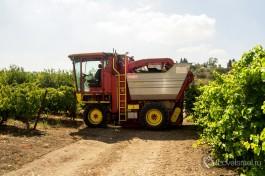 Машина для автоматического сбора урожая винограда.