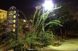 Ночной Ашдод.
