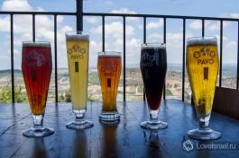 5 сортов нашего израильского пива.